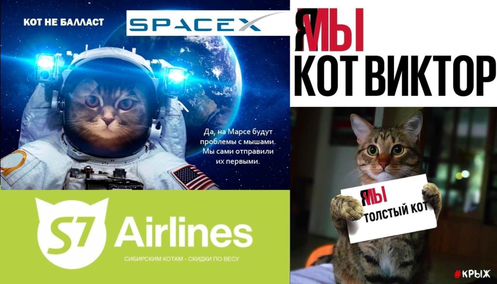 Котики, полярные мишки и кабаны с трюфелями: дайджест интересной рекламы за ноябрь 2019